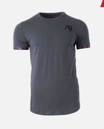 Grey Flag Tee - grijs shirt met logo op borst en rondom mouwen